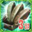 3일 룬 패키지(마이스터/인카르/전장)